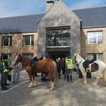 Residents enjoying visit from horses, Blatchington Manor residential home, Seaford, East Sussex